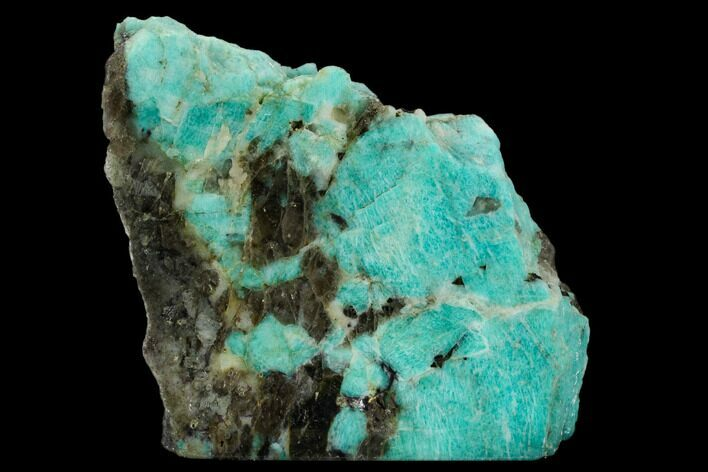 "5.4"" Wide, Single Side Polished Amazonite - Madagascar"