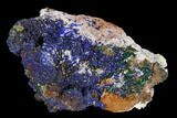 "2"" Sparkling Azurite and Malachite Crystal Cluster - Morocco - #128161-1"