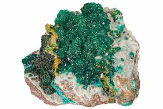 "2.6"" Gemmy Dioptase and Mimetite on Dolomite - Ntola Mine, Congo For Sale, #130499"