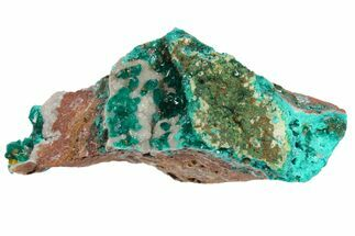 "Buy 2"" Green Dioptase Crystals on Dolomite - Mpita Prospect, Congo - #131260"
