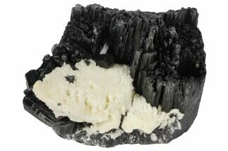 "Buy 1.7"" Black Tourmaline (Schorl) Crystals with Orthoclase - Namibia - #132193"