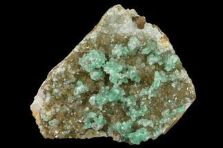Quartz & Atacamite - Fossils For Sale - #132363