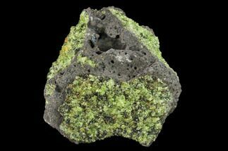 Forsterite var. Peridot - Fossils For Sale - #132294
