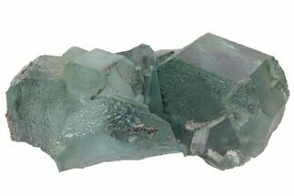 Fluorite  - Fossils For Sale - #132738