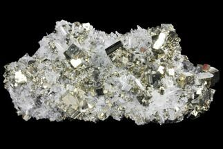 Pyrite & Quartz - Fossils For Sale - #133014