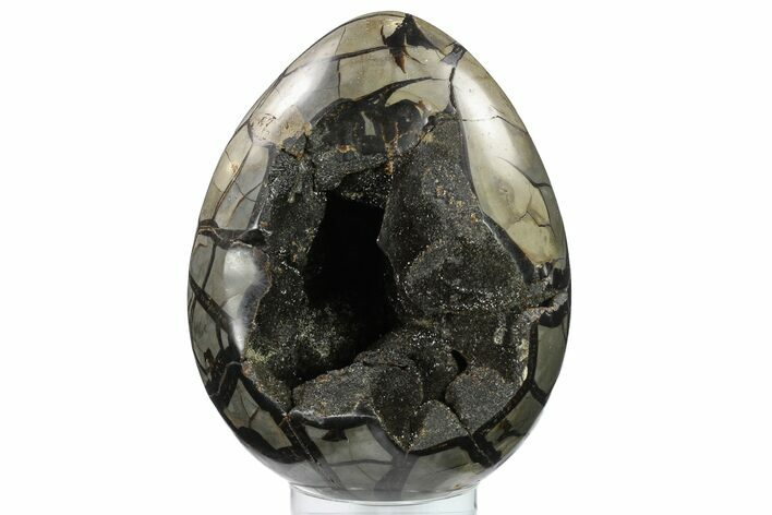"Bargain, 8.9"" Septarian ""Dragon Egg"" Geode - Black Crystals"