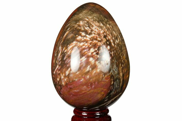 "4.2"" Colorful, Polished Petrified Wood ""Egg"" - Triassic"