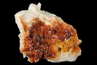 "Buy 2.3"" Ruby Red Vanadinite Crystals on Barite - Morocco - #134692"