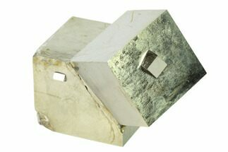 Pyrite - Fossils For Sale - #136704