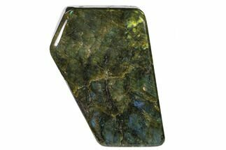 Labradorite - Fossils For Sale - #136269