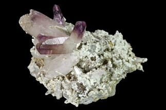 Quartz var. Amethyst - Fossils For Sale - #137001