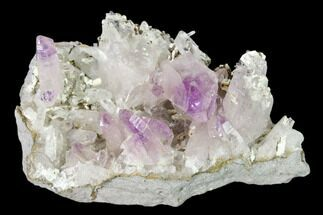 Quartz var. Amethyst - Fossils For Sale - #137004