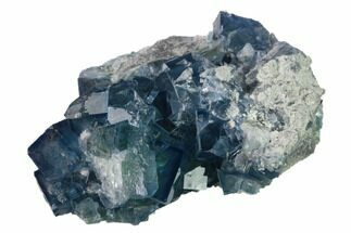 Fluorite  - Fossils For Sale - #137649