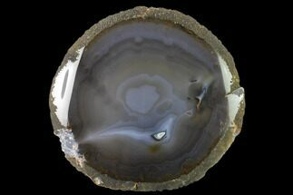 Quartz var. Chalcedony - Fossils For Sale - #137676