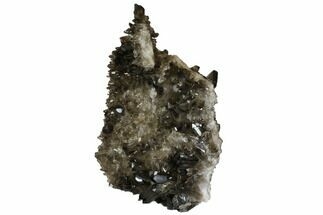 "15.7"" Tall, Free-Standing Smoky Quartz Cluster - Brazil For Sale, #137843"