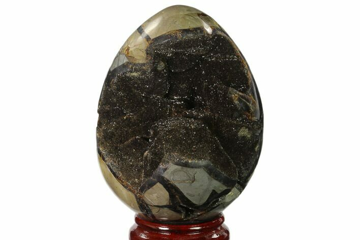 "6.5"" Septarian ""Dragon Egg"" Geode - Black Crystals"