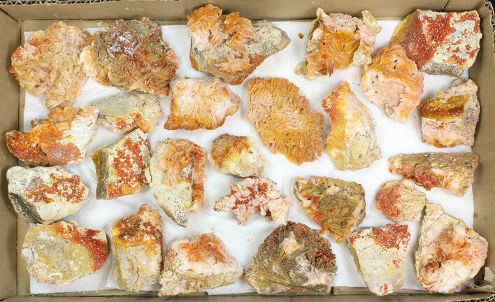 "Wholesale Lot: 2-3"" Bladed Barite With Vanadinite - 26 Pieces"