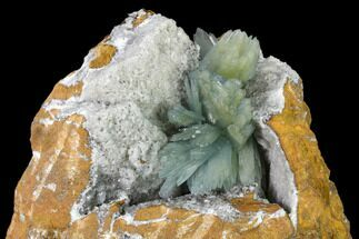 "8.2"" Blue Bladed Barite Crystal Clusters with Calcite  - Morocco For Sale, #138293"