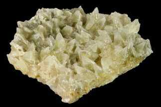 Calcite - Fossils For Sale - #138453