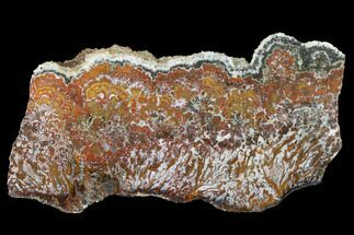 "8.1"" Wingate Pass Plume Agate Slab - California For Sale, #141293"