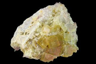 "Buy 2.15"" Yellow Cubic Fluorite Crystal Cluster with Quartz - Morocco - #141637"