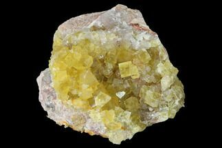 "Buy 2.4"" Yellow Cubic Fluorite Crystal Cluster with Quartz - Morocco - #141640"