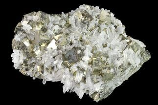 Pyrite & Quartz - Fossils For Sale - #142650