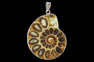 "1.6"" Fossil Ammonite Pendant - 110 Million Years Old For Sale, #142892"