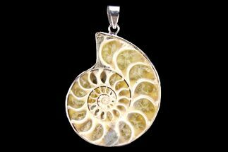 "Buy 1.6"" Fossil Ammonite Pendant - 110 Million Years Old - #142906"