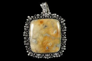Buy 20 Million Year Old Fossil Coral Pendant - Indonesia - #143704