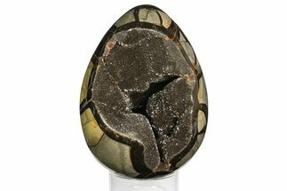 "7.15"" Septarian ""Dragon Egg"" Geode - Black Crystals For Sale, #145253"