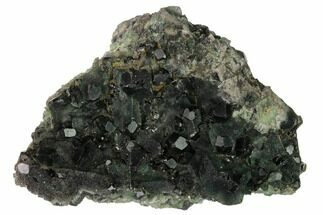 Fluorite - Fossils For Sale - #146898