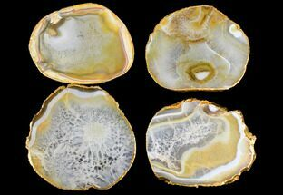 Four Polished Brazilian Agate Coasters - Gold Electroplated Edges For Sale, #147794