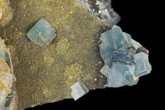 Fluorite & Quartz var. Smoky - Fossils For Sale - #147090