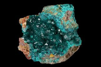 Dioptase - Fossils For Sale - #148464