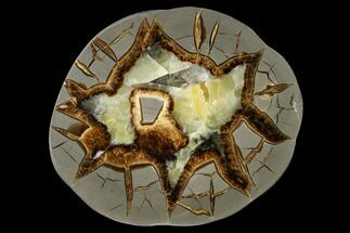 "Buy 5.1"" Polished Septarian Slab - Utah - #150022"