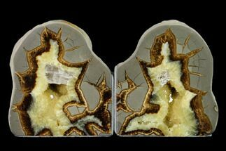 "Buy 4.6"" Tall, Crystal Filled Septarian Geode Bookends - Utah - #149947"