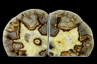"3.8"" Calcite Filled Septarian Bookends - Utah For Sale, #149915"
