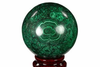 Malachite - Fossils For Sale - #150243