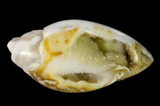 "1.64"" Chalcedony Replaced Gastropod With Druzy Quartz - India For Sale, #150185"