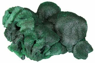 Malachite  - Fossils For Sale - #150459
