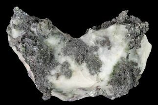 "Buy 2.3"" Native Silver Formation in Calcite - Morocco - #152605"