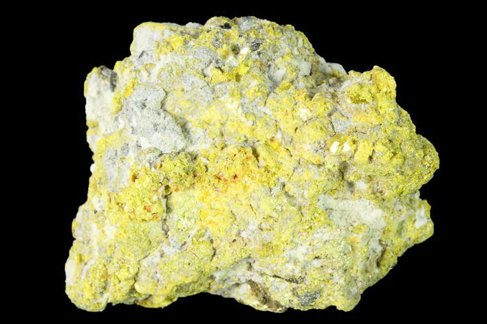 "1.48"" Yellow Orpiment - Crven Dol Mine, Macedonia"