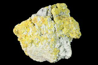 "1.31"" Yellow Orpiment - Crven Dol Mine, Macedonia For Sale, #153350"