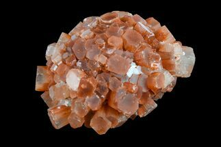 Aragonite - Fossils For Sale - #153795