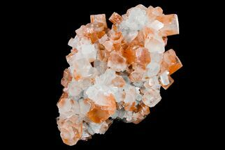Aragonite - Fossils For Sale - #153816