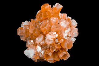 Aragonite - Fossils For Sale - #153867