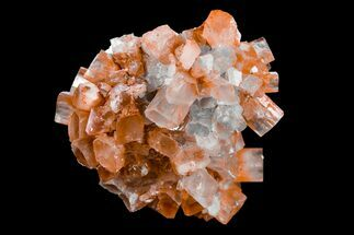 "Buy 2"" Aragonite Twinned Crystal Cluster - Morocco - #153874"