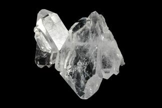"Buy 1.65"" Faden Quartz Crystal Cluster - Pakistan - #154459"