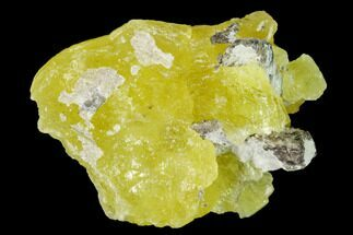 "Buy 1.3"" Lemon-Yellow Brucite - Balochistan, Pakistan - #155197"